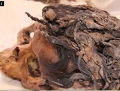 الإندبندنت: العثور على جثمان امرأة بتصفيفة شعر أنيقة بتل العمارنة