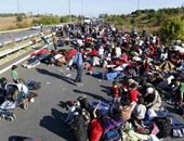 الأمم المتحدة: نحو 350 ألف سورى نزحوا من إدلب منذ أول ديسمبر