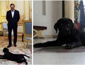 """الإليزيه يطلق حسابا لـ""""فيلاى"""" كلبة الرئيس الفرنسى على """"تويتر"""""""
