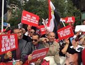 قنصلية مصر بنيويورك تستقبل المصوتين فى المرحلة الثانية من انتخابات النواب
