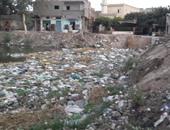 """بالصور ..انتشار القمامة والحيوانات النافقة بقرية """"الجرايدة"""" بكفر الشيخ"""
