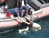 مصرع طالب غرقًا أثناء الاحتفال بمولد السيدة العذراء فى المنيا