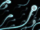 دراسة نيوزيلندية: جودة الحيوانات المنوية تنخفض مع تقدم السن