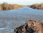 ننشر تفاصيل ورشة عمل مشروع إدارة الحشائش المائية ببحيرتى كيوجا وألبرت