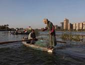 """""""الثروة السمكية """": إنتاج مصر من الأسماك مليون و570 ألف طن سنويا"""