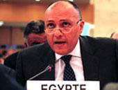 المندوبون الأفارقة بنيويورك يعلنون دعمهم لحصول مصر  على مقعد بمجلس الأمن