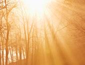 """أشعة الشمس تساعد فى تعويض الجسم بفيتامين """"د"""" والوقاية من جلطات القلب"""