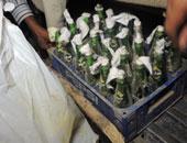 حبس 5 عناصر إرهابية ضبط بحوزتهم مولوتوف وبنزين فى حلوان