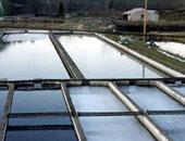 """""""الزراعة"""": وصول معدات بـ40 مليون جنيه من فلندا لتطهير البحيرات الشمالية"""
