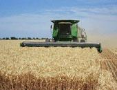 شعبة المصدرين: نسعى لفتح أسواق جديدة للمحاصيل الزراعية فى أفريقيا