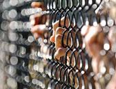 العثور على أربعة سجناء مقتولين بالبرازيل فى واحد من أكثر السجون خطورة