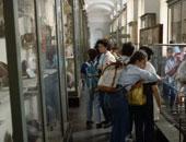 """هجوم على """"متحف مصر"""" بإيطاليا بعد تخفيض تذاكر العرب.. وصحيفة: دعاية انتخابية"""