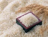 """""""التموين"""" تضخ كميات من الأرز المحلى بسعر 4.5 جنيه للكيلو بمنافذ الوزارة"""