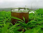 """مُركب """"الكاتشيين"""" فى الشاى الأخضر قد يمنع تطور سرطان البروستاتا"""
