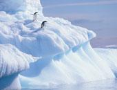 الأمم المتحدة: رصد موجة حر قياسية فى القارة القطبية الجنوبية عند 18.3 درجة
