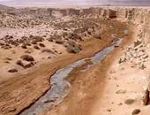 سامح شكرى: قضية الصحراء الغربية معقدة وهناك توافق على اعتماد المسار الأممى