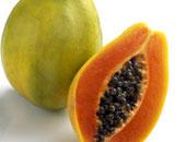 تحويل أوراق فاكهة البابايا لعلاج حمى الضنك