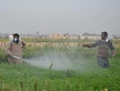 """""""الزراعة"""" تنهى تدريب 1112 من مطبقى المبيدات للقضاء على الرش العشوائى"""