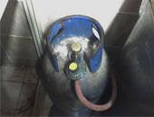 ضبط مصنع غير مرخص لإنتاج عبوات الغاز صغيرة الحجم بالجيزة