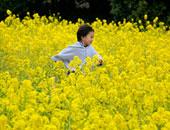"""""""فتّحى يا وردة"""".. اليوم بداية الاعتدال الربيعى وأول أيام فصل الربيع فلكيًا"""
