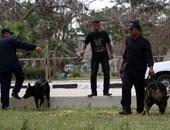 """10 معلومات لا تعرفها عن """"الكلاب البوليسية"""".. نجحت فى حل 117 قضية"""