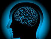 علماء يضعون خريطة طريق خاصة بعمل العقول