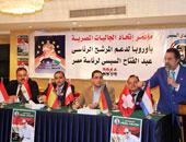 تأجيل انتخابات الأمانة العامة لاتحاد الجاليات المصرية بالخارج ستة أشهر