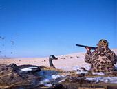 إخلاء سبيل 4سعوديين بعد ضبطهم يصطادون حيوانات برية بمحمية جبل علبة