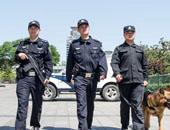 تسجيل 20 إصابة بمرض الجمرة الخبيثة الجلدية فى منغوليا الداخلية بالصين