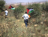 فى ذكرى النكبة..  3 كتب عن القضية الفلسطينية تعرف عليها