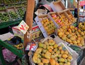 الزراعة: ارتفاع صادرات المنتجات الزراعية لـ 4.5 مليون طن خلال عام 2015