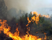 فرق الإطفاء الأسترالية تحاول إخماد حرائق الغابات جنوب البلاد