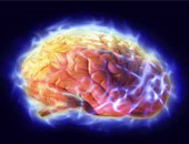 طبيب فرنسى: المخ يتأثر بزيادة الكولسترول والضغط المرتفع ومرض السكر