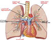 هل يمكن الشفاء الكامل من حساسية الصدر؟