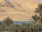 فتوى قانونية: بحيرة قارون محمية طبيعية ويحظر على محافظة الفيوم تأجيرها