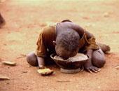 الأغذية العالمى: 20 مليون شخص يعانون انعدام الأمن الغذائى شرق أفريقيا