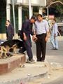 بالصور.. اللحظات الأولى عقب انفجار جامعة القاهرة