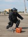 إصابة ضابط وأمين شرطة فى انفجار عبوة ناسفة أثناء تفكيكها بالإسكندرية