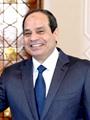 اليوم.. الرئيس السيسى يلتقى عددا من الأدباء والكتاب بقصر الاتحادية