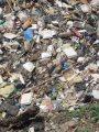 إحصائية رسمية: السويد مضطرة لاستيراد القمامة لإعادة تدويرها بالتدفئة