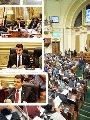 مجلس النواب والنائب طارق رضوان و لجنة العلاقات الخارجية بالبرلمان والنائب طارق الخولى