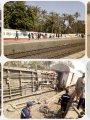 حادث قطار المرازيق
