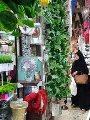 """صور.. شارع """"زنقة الستات"""" بداية من ريا وسكينة لأحدث اكسسوارات البنات.. مبانيه الأثرية حولته من منطقة تجارية إلى مقصد للسائحين المصريين والأجانب.. شهرته التاريخية حولته لمسرح يستضيف الأعمال السينمائية"""