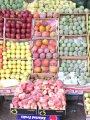 """لإنقاذ 13 محصول من الآفة المدمرة.. تنفيذ برنامج  مكافحة """"ذبابة الفاكهة """" لحماية 1.658 مليون فدان.. لزيادة جودة المنتجات المطروحة بالأسواق  وتقليل حالات رفض الصادرات.. بدء سحب العينات للكشف عن متبقيات المبيدات"""