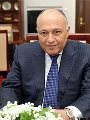 وزير الخارجية سامح شكرى والمصريين فى الخارج والتصويت فى الانتخابات