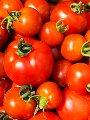 تعرف على أسعار الخضراوات والفاكهة بمنافذ المجمعات الاستهلاكية
