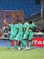 تونس ترفع شعار النصر ضد السنغال فى أمم أفريقيا 2019