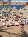 مصر للطيران: تشغيل خط جاتويك - شرم الشيخ رحلة أسبوعية لنقل السياحة البريطانية