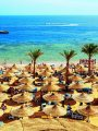 أخبار × 24 ساعة.. السياحة: زيادة أعداد السائحين إلى مصر دليل على استقرار البلاد