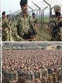 الدفاع الصينية: الهند تعيد جنديا صينيا محتجزا لديها